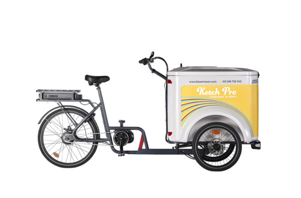 Vélo cargo triporteur à assistance électrique, caisson ABS, Ketch Pro Enviolo